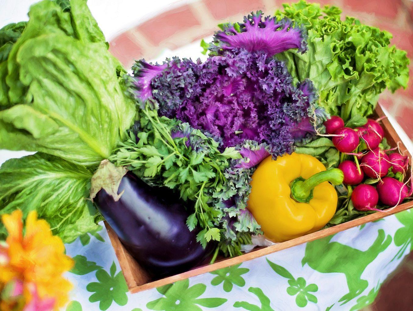 如何令孩子喜歡吃蔬菜