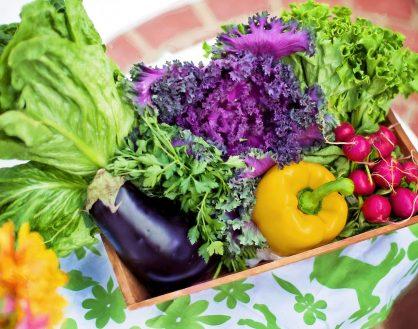 如何令孩子喜欢吃蔬菜